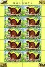 № 559 Kb - From The Red Book of the Republic of Moldova: Fauna - Mammals 2006