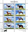 № 565-568 Kb - Pedigree Dogs 2006