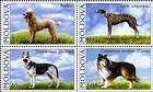 № 565-568Zd2 - Pedigree Dogs 2006