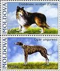 № 566+568Zd - Pedigree Dogs 2006