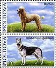 № 567+565Zd - Pedigree Dogs 2006