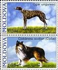 № 568+566Zd - Pedigree Dogs 2006