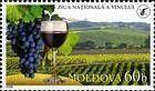 Grapes, Wine and Vineyard