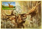 № 624 MC3 - Deer (Joint Issue Between Moldova and Kazakhstan) 2008