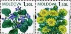 № 655-656Zd - Wild Flowers of Moldova 2009