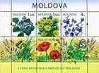 № Block 47 (655-658) - Wild Flowers of Moldova 2009