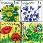№ 656-658Zd - Wild Flowers of Moldova 2009