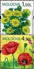 № 656+658Zd - Wild Flowers of Moldova 2009