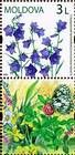 № 657Zf - Wild Flowers of Moldova 2009