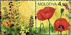 № 658Zf1 - Wild Flowers of Moldova 2009