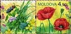 № 658Zf2 - Wild Flowers of Moldova 2009