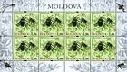 № 659 Kb - From The Red Book of the Republic of Moldova: Insects 2009