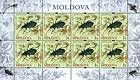 № 661 Kb - From The Red Book of the Republic of Moldova: Insects 2009
