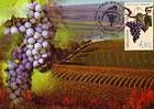 № 676 MC1 - The «Moldova» Grape Variety 2009