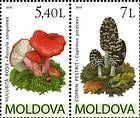 № 696-697Zd - Mushrooms (IV) 2010