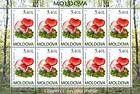 № 696 Kb - Bloody Brittlegill (Russula Sanguinea)