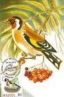 № 698 MC1 - Birds (III) 2010