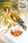 № 698 MC3 - Birds (III) 2010