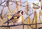 № 698 MC6 - Birds (III) 2010