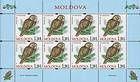 № 700 Kb - Ural Owl (Strix Uralensis Pallas)