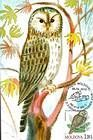 № 700 MC1 - Ural Owl (Strix Uralensis Pallas)