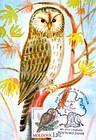 № 700 MC2 - Ural Owl (Strix Uralensis Pallas)