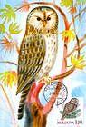 № 700 MC6 - Birds (III) 2010