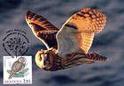 № 700 MC8 - Ural Owl (Strix Uralensis Pallas)