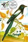 № 701 MC1 - Eurasian Magpie (Pica Pica)