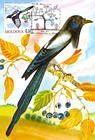№ 701 MC5 - Eurasian Magpie (Pica Pica)