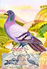 № 702 MC2 - Birds (III) 2010