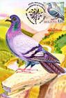 № 702 MC6 - Birds (III) 2010