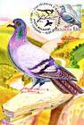№ 702 MC7 - Birds (III) 2010