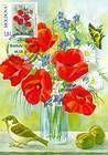 № 710 MC - Art: Paintings of Flowers 2010