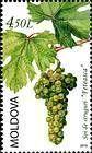 The «Feteasca» Grape Variety