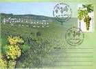 № 716 FDC2 - The «Feteasca» Grape Variety 2010