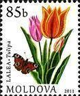 № 752 (0.85 Lei) Tulip