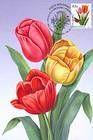 № 752 MC1 - Flowers 2011