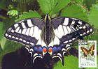 № 78 MC3 - Butterflies and Moth (I) 1993