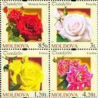 № 805-808Zd1 - Roses 2012