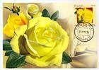 № 806 MC3 - Freisia Rose