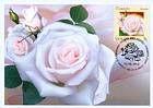 № 807 MC1 - Roses 2012