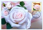 № 807 MC2 - Roses 2012