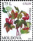 № 825 (1.75 Lei) Viburnum