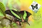№ 839 MC - Butterflies and Moths (III) 2013