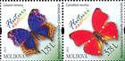№ 840+841ZdH - Butterflies and Moths (III) 2013