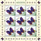 № 840 Kb - Butterflies and Moths (III) 2013