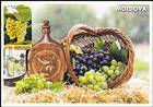 № 849 MC4 - Wine and Grapes