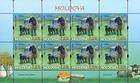 № 877 Kb - Breeds of Sheep 2014