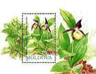 № Block 4x (87x) - Ladys Slipper Orchid (Colour Displacement Error)